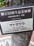 DSC07839.JPG